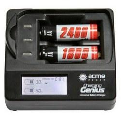 Зарядное устройство AcmePower AP CH-P1670, арт. 1139